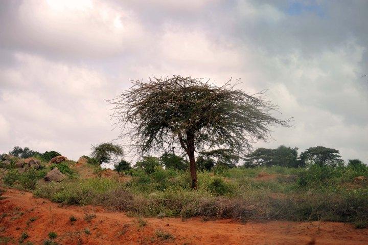 Drive to Nyumbani Village