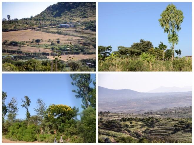 Travel to Nyumbani Village